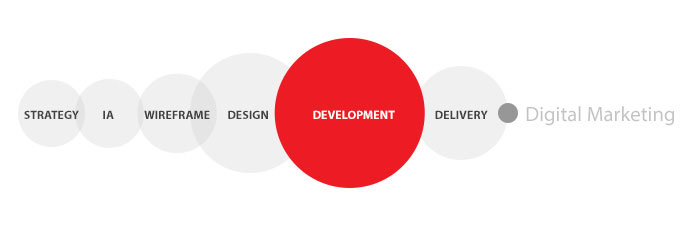 Development Infographic for Red Cherry